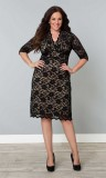 Scalloped Boudoir Lace Dress Plus Size Shift Dress