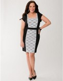 Plus Size Textured Panel Sheath Dress